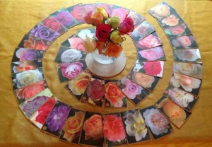 Rose-Spiral-for-Oracle-page