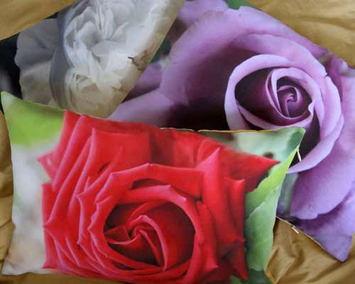Rose Cushions