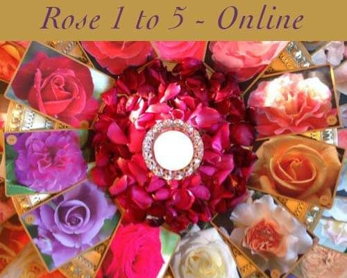 Rose Classes 1 - 5 Online