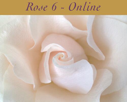 Rose Class 6 Online