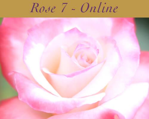 Rose Class 7 Online